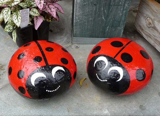 stenen-lieveheersbeestjes.jpg