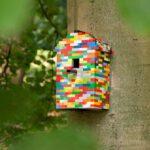 Creatief met lego: voor bouwers die ook van knutselen houden